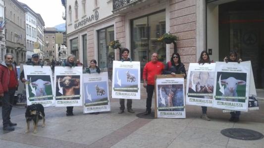 Manifestazione a Trento in difesa degli agnelli a Pasqua 24-25-26 Marzo 7