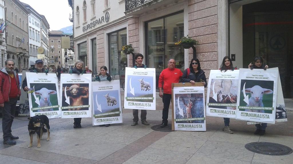 Manifestazione a Trento in difesa degli agnelli a Pasqua 24-25-26 Marzo 25