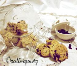 Biscotti di Farro con Gocce di Cioccolato e Frutti Rossi 3