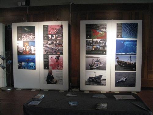Trento Veg - 2012 Days of future past 108