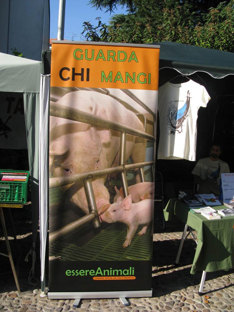 Trento Veg - 2012 Days of future past 331