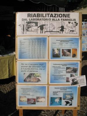 Trento Veg - 2012 Days of future past 161