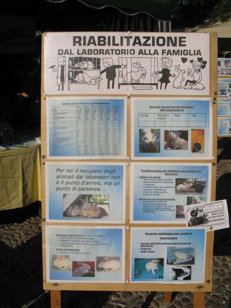 Trento Veg - 2012 Days of future past 352