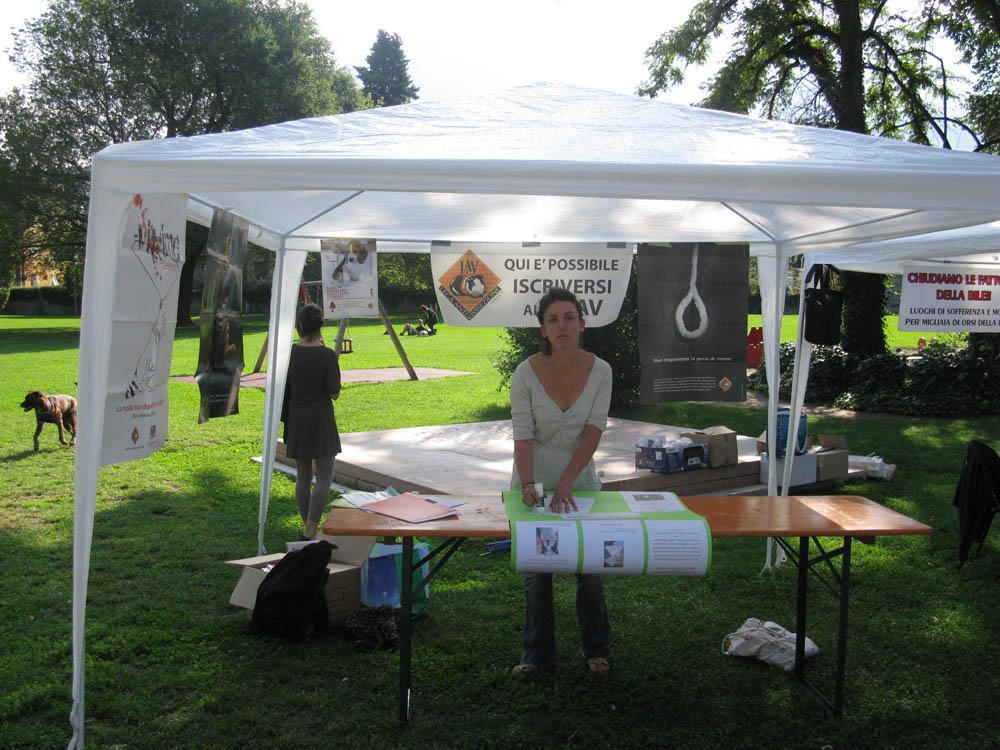 Trento Veg - 2012 Days of future past 195