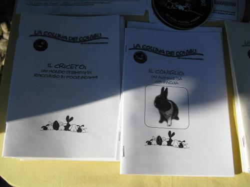 Trento Veg - 2012 Days of future past 165