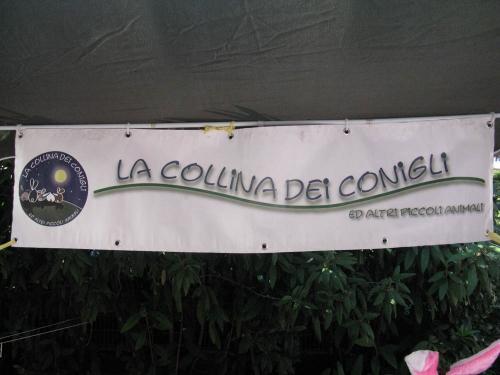 Trento Veg - 2012 Days of future past 167