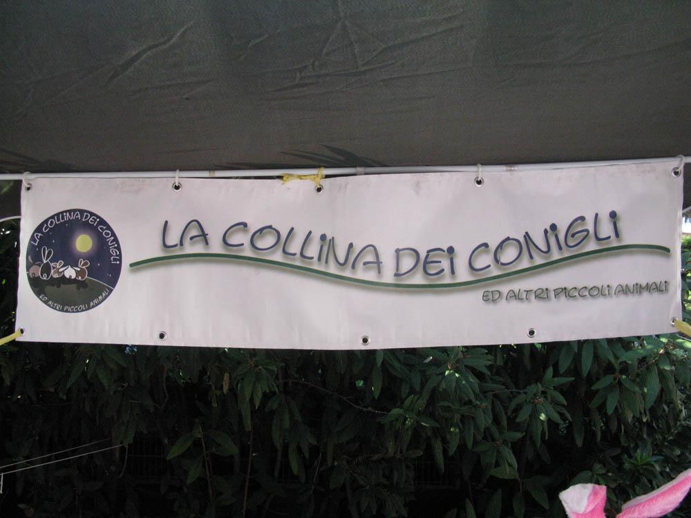 Trento Veg - 2012 Days of future past 358