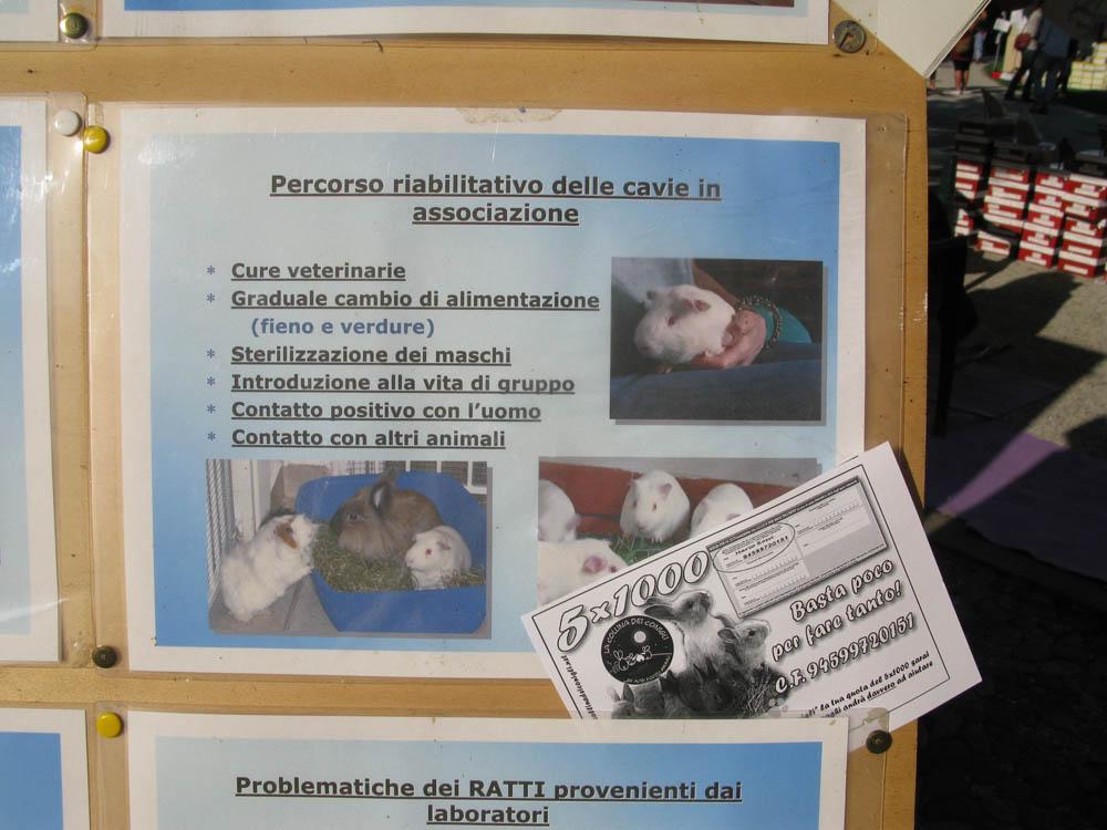 Trento Veg - 2012 Days of future past 362