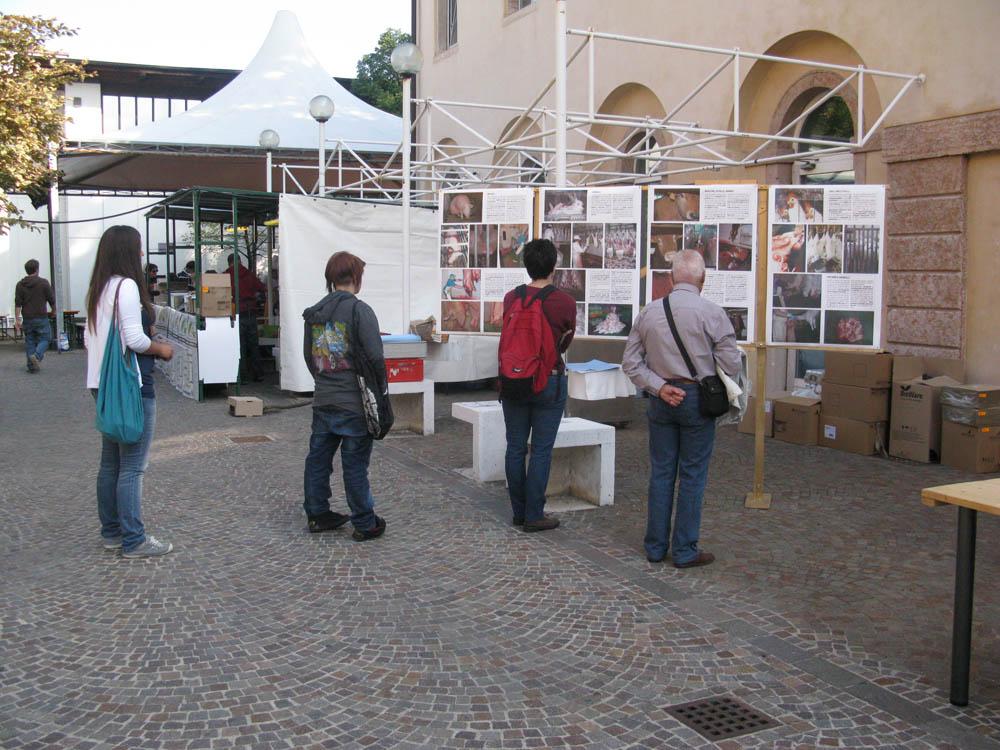 Trento Veg - 2012 Days of future past 205