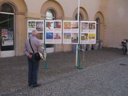 Trento Veg - 2012 Days of future past 15