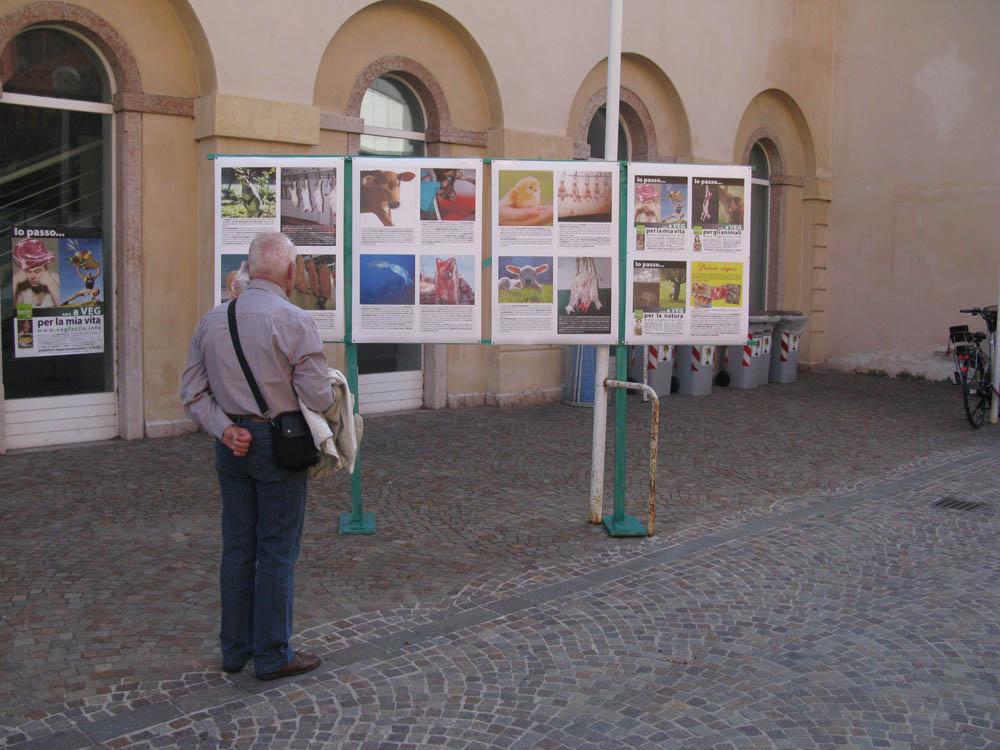Trento Veg - 2012 Days of future past 207