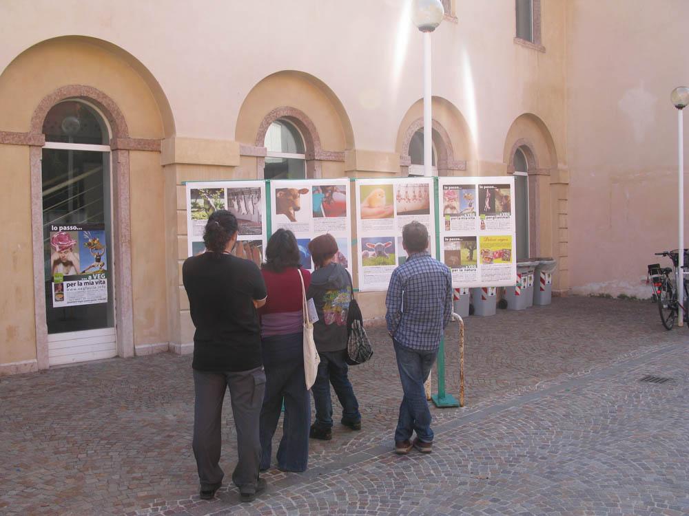 Trento Veg - 2012 Days of future past 247
