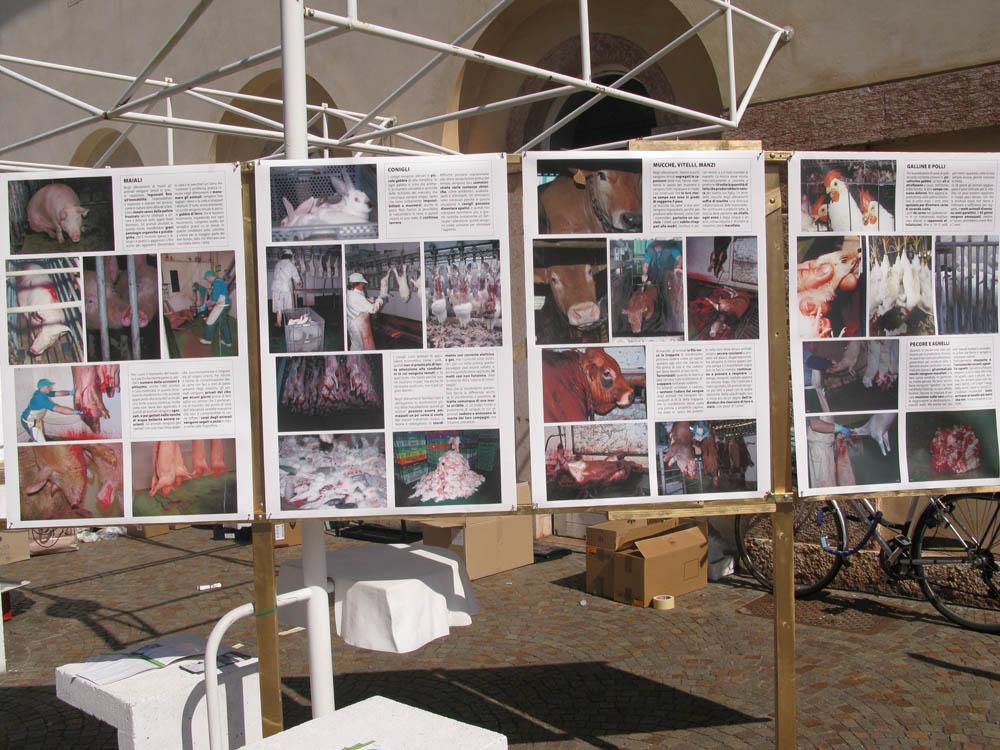Trento Veg - 2012 Days of future past 264