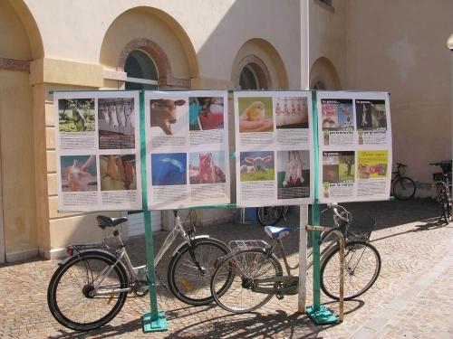 Trento Veg - 2012 Days of future past 76