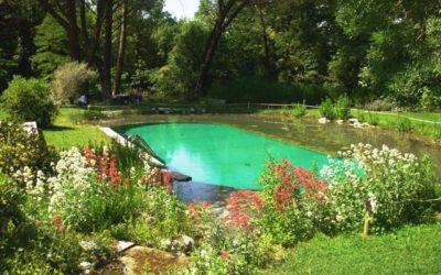 Biopiscine: arriva la piscina naturale che non contiene cloro 8