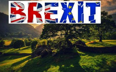 Brexit, cosa cambia dal punto di vista ambientale 4