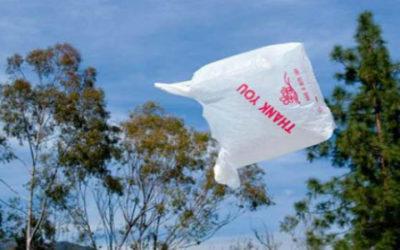 Illegali metà dei sacchetti in bioplastica che circolano in Italia 1