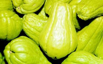 Chayote proprietà e ricette di questo strano frutto 1