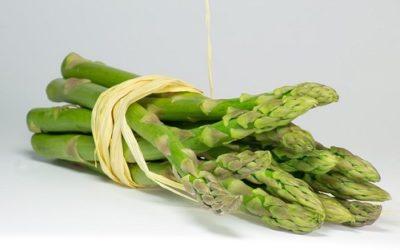 Ricette con asparagi: consigli e suggerimenti 2