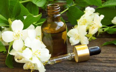 Olio essenziale gelsomino: proprietà e utilizzi 1