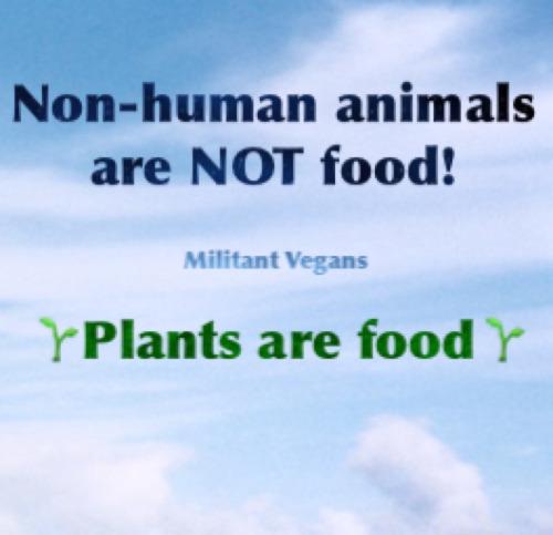 ▶️▶️▶️ www.vegansociety.com 25
