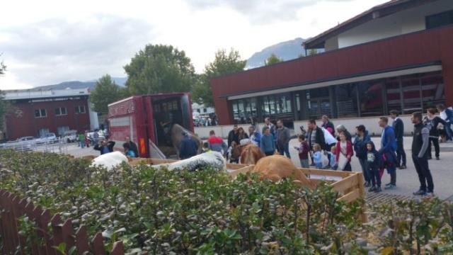 Fronte animalista Bolzano - Manifestazione Porte aperte 10 anni della casa della zootecnia 3