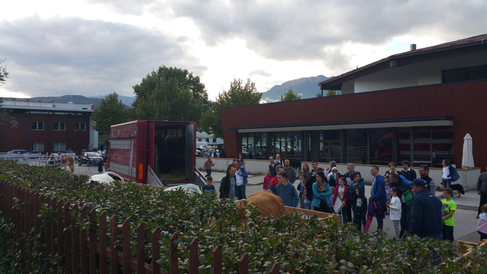 Fronte animalista Bolzano - Manifestazione Porte aperte 10 anni della casa della zootecnia 19