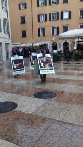 Manifestazione di protesta contro il massacro Pasquale degli agnelli e capretti 15 Aprile 2017 11