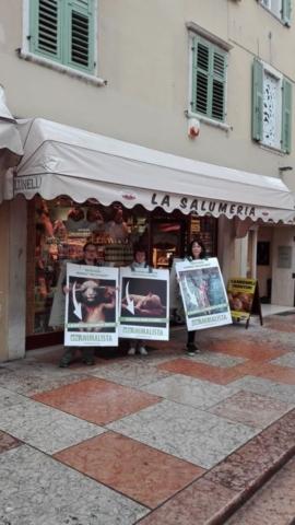 Manifestazione di protesta contro il massacro Pasquale degli agnelli e capretti 15 Aprile 2017 4