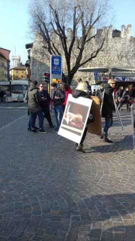 """""""A PASQUA NON UCCIDO"""" Manifestazione di protesta contro la strage pasquale di agnelli e capretti 11"""