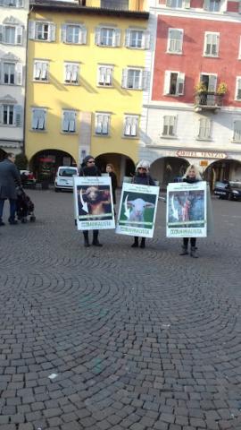 """""""A PASQUA NON UCCIDO"""" Manifestazione di protesta contro la strage pasquale di agnelli e capretti 13"""