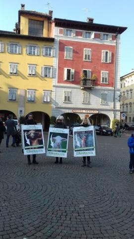 """""""A PASQUA NON UCCIDO"""" Manifestazione di protesta contro la strage pasquale di agnelli e capretti 14"""