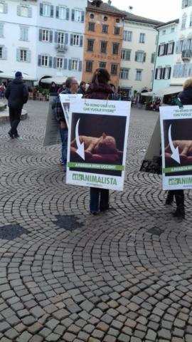 """""""A PASQUA NON UCCIDO"""" Manifestazione di protesta contro la strage pasquale di agnelli e capretti 16"""