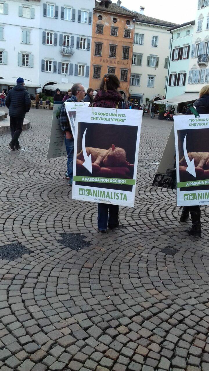 """""""A PASQUA NON UCCIDO"""" Manifestazione di protesta contro la strage pasquale di agnelli e capretti 39"""