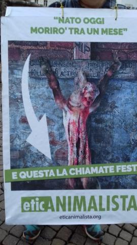 """""""A PASQUA NON UCCIDO"""" Manifestazione di protesta contro la strage pasquale di agnelli e capretti 17"""