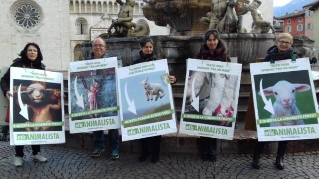 """""""A PASQUA NON UCCIDO"""" Manifestazione di protesta contro la strage pasquale di agnelli e capretti 19"""