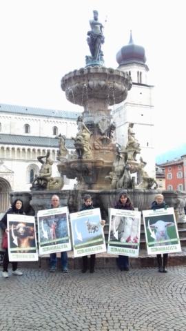 """""""A PASQUA NON UCCIDO"""" Manifestazione di protesta contro la strage pasquale di agnelli e capretti 20"""
