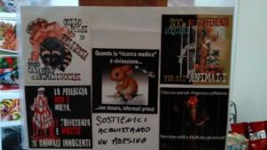 Tavolo informativo di Etica Animalista alla fiera annuale Fa la cosa giusta - 26-27-28 ottobre 2018 - Trento 20
