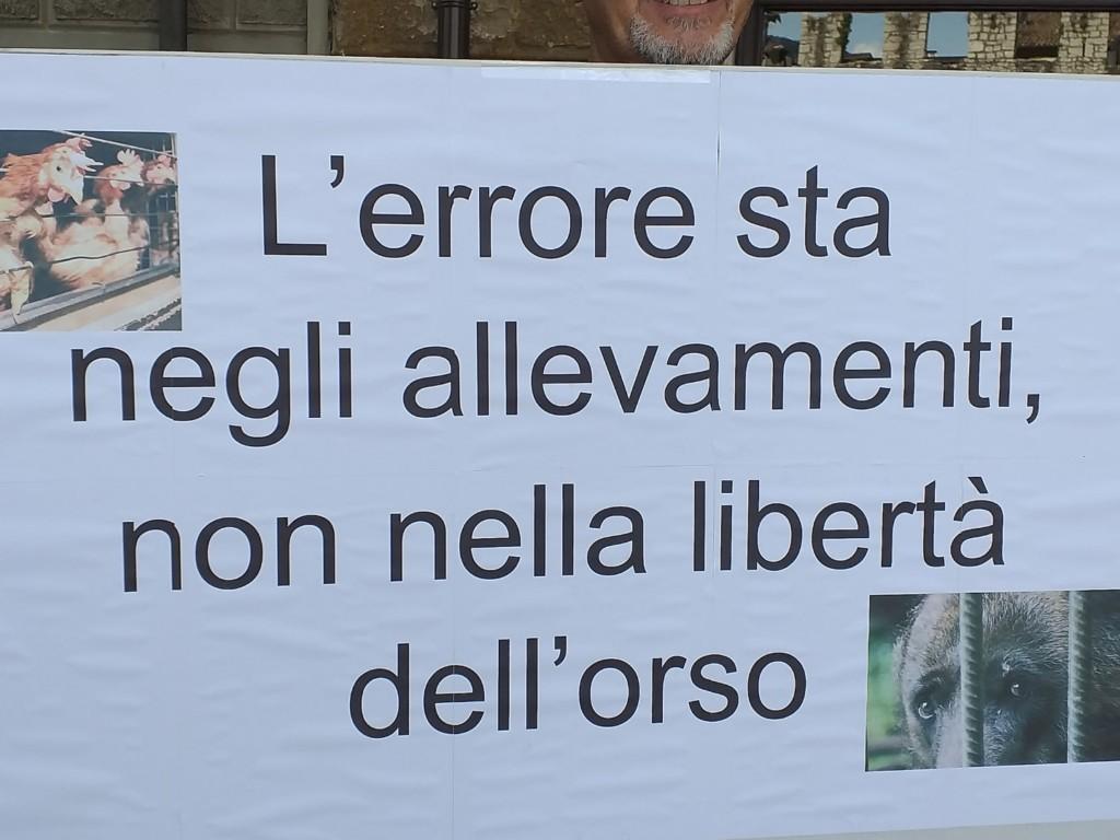 Manifestazione pro M49 - Trento13 luglio 2019 - Critiche ed osservazioni all'evento e al deludente mondo animalista 7