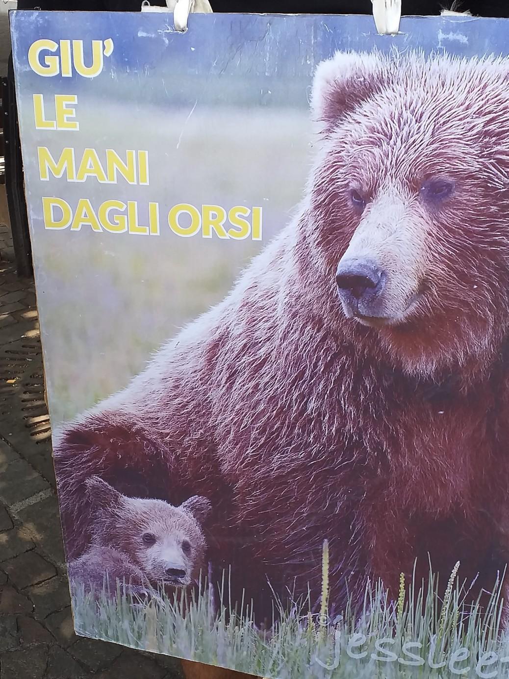 Manifestazione pro M49 - Trento13 luglio 2019 - Critiche ed osservazioni all'evento e al deludente mondo animalista 2