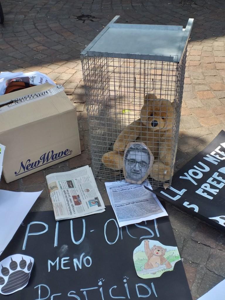 Manifestazione pro M49 - Trento13 luglio 2019 - Critiche ed osservazioni all'evento e al deludente mondo animalista 3